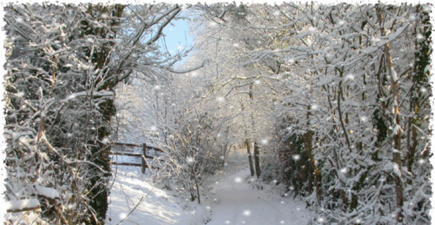 Neige hiver rechauffement climatique