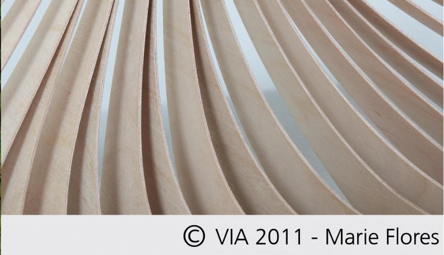 VIA design 2011 c